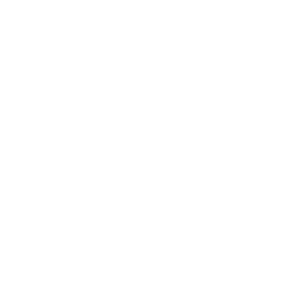 The word history in extremely large type